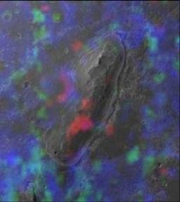 Opportunity спектральный анализ поверхности Марса со спутника
