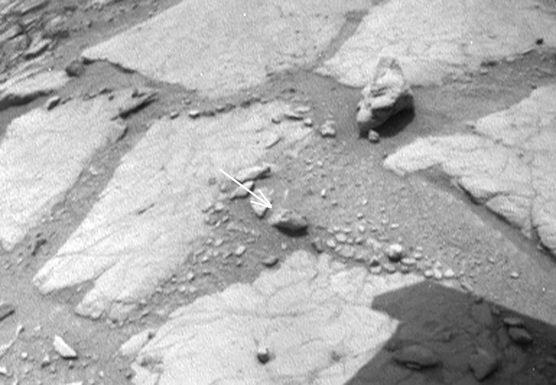 dinosaurs-in-mars-news (12)