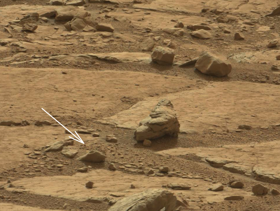 dinosaurs-in-mars-news (3)