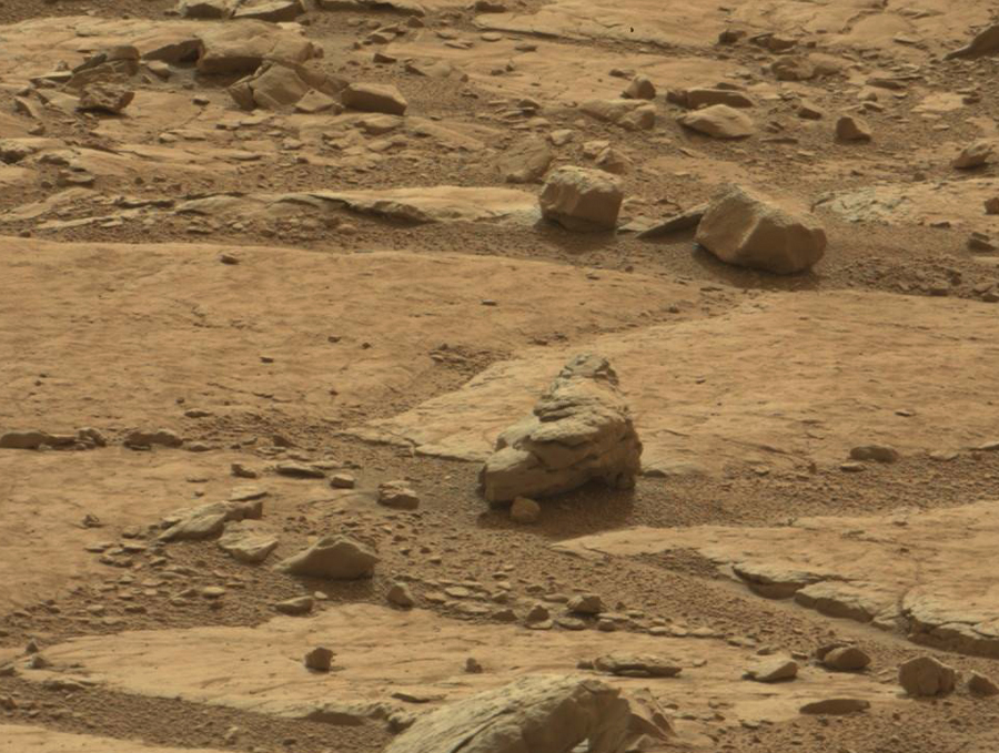 dinosaurs-in-mars-news (6)