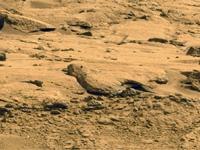 Martians (10)