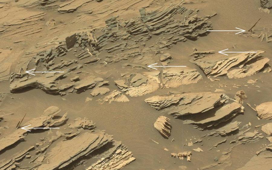 Martians (4)