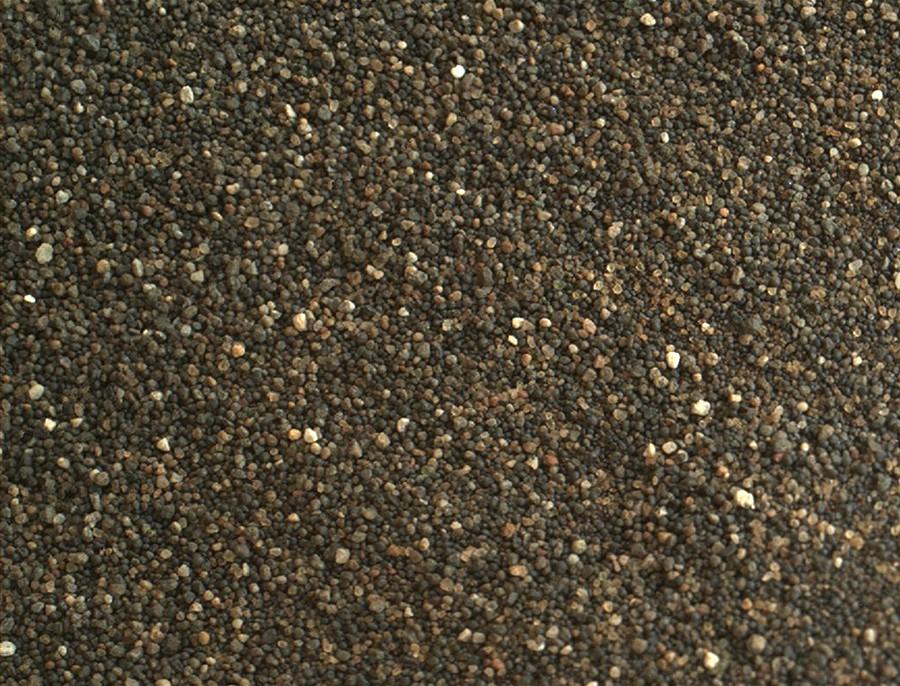 Namib dunes (7)