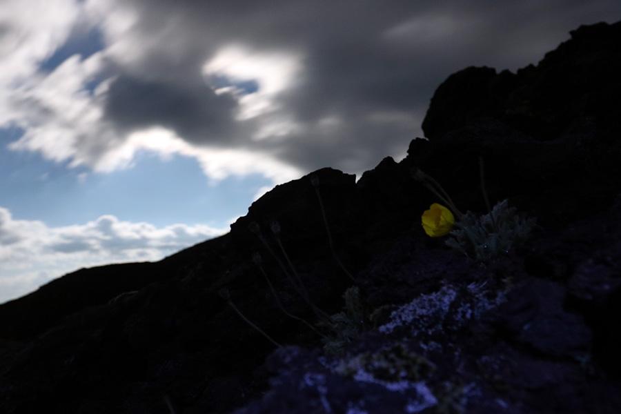 окрестности вулкана Толбачик на Камчатке