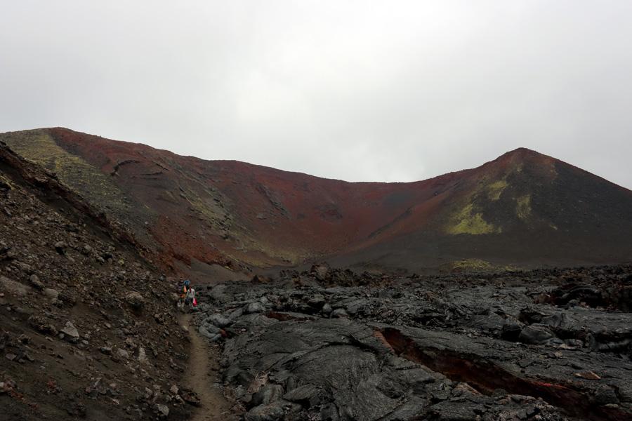 путь к вулкуну Толбачик