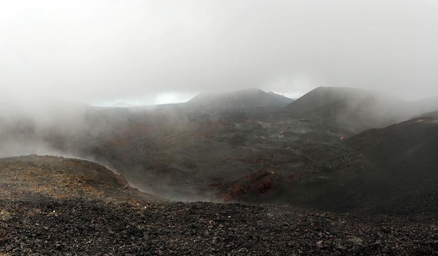 панорама с вулкана Плоский Толбачик